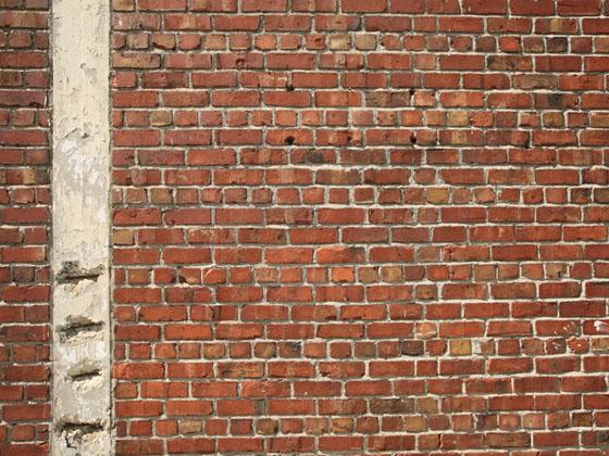 Concrete wallpaper decor design show for Brick designs