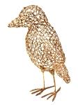 Animal X Golden Bird